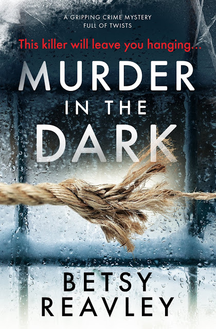 murder in the dark by betsy reavley book cover